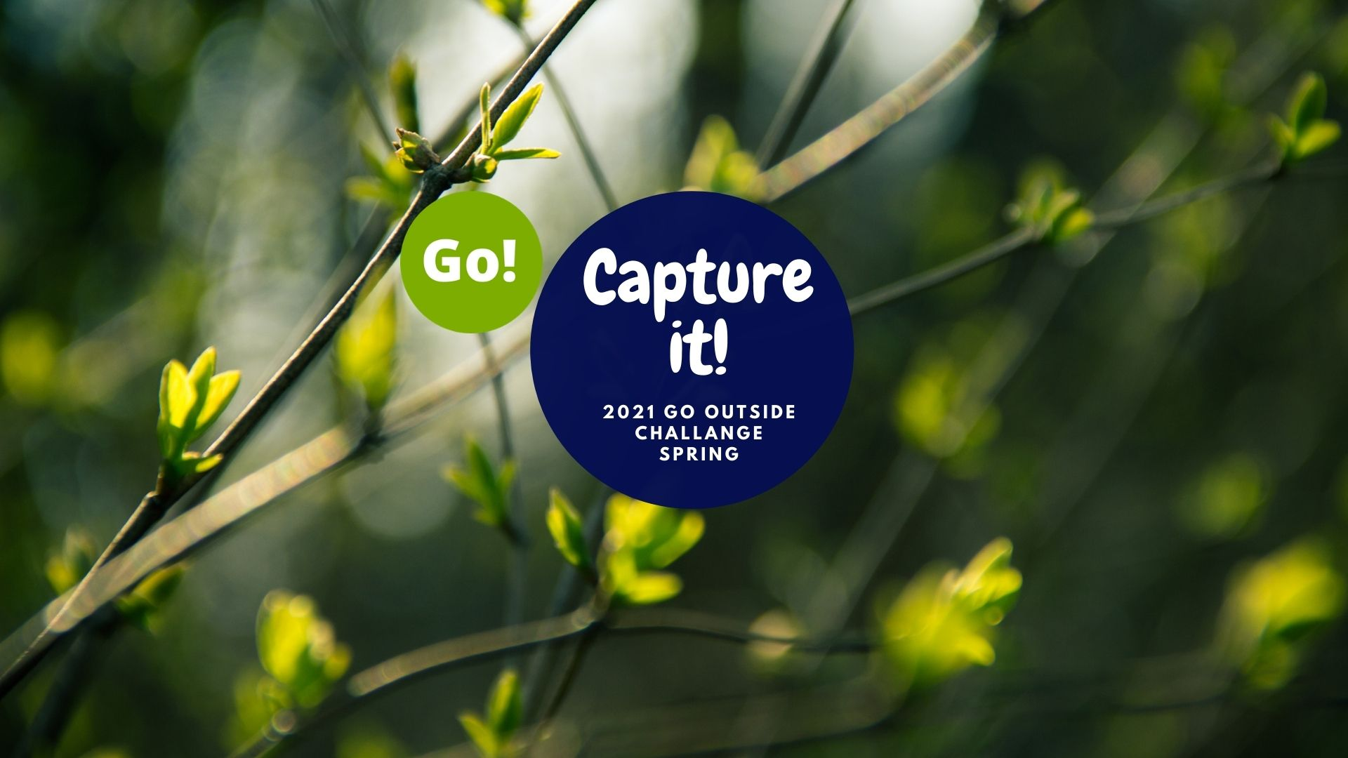 Spring Capture It Challenge with Keela Pfaff – +3 Prize Points