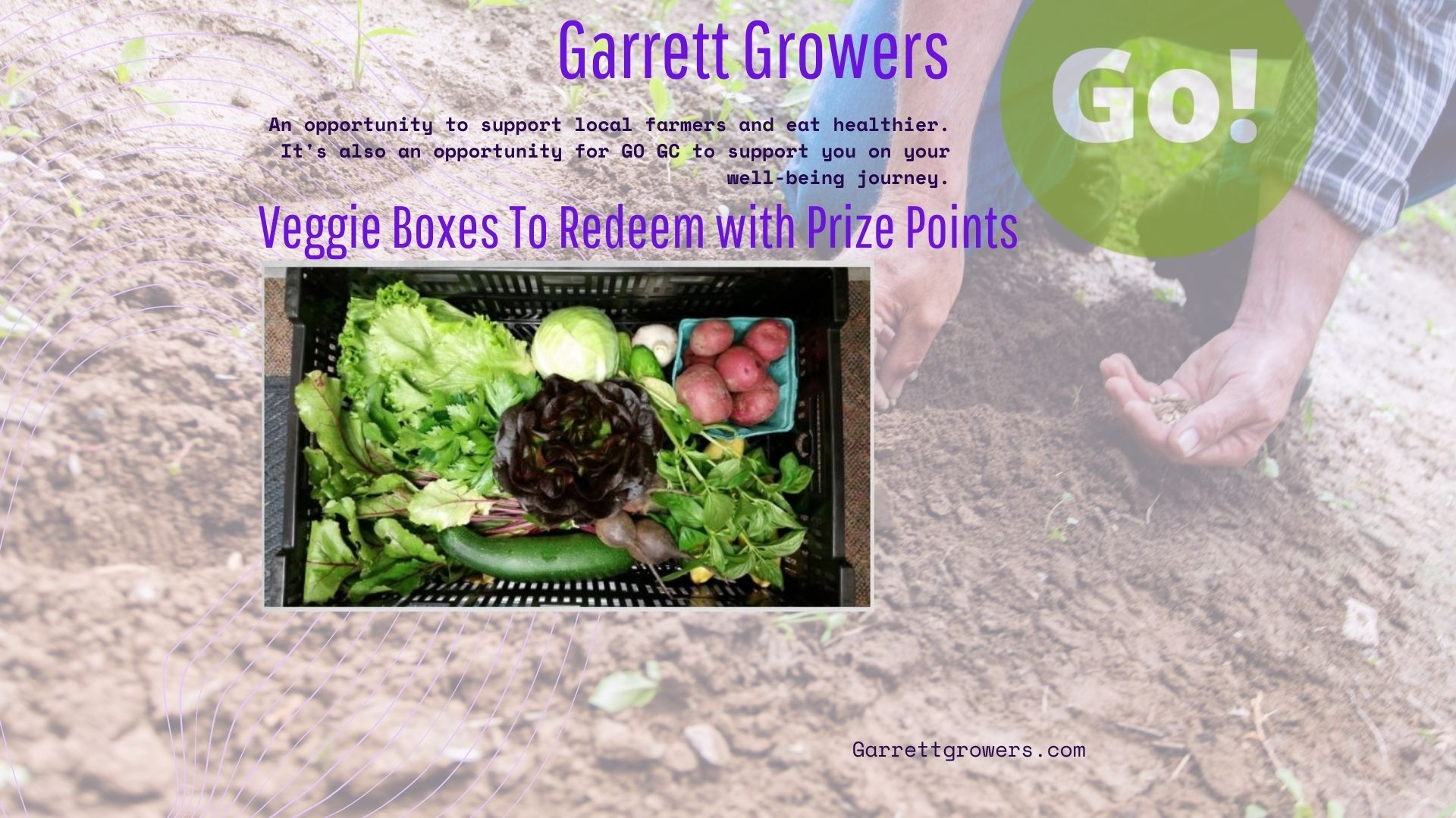 Cheryl & Carla unbox the first Garrett Growers Veggie Box of the 2021 season!