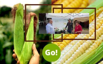 Farmers' Market Week – Day 3 – +3 Prize Points